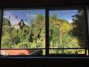 View from my healing room